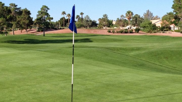 Palm Valley Golf Course 11