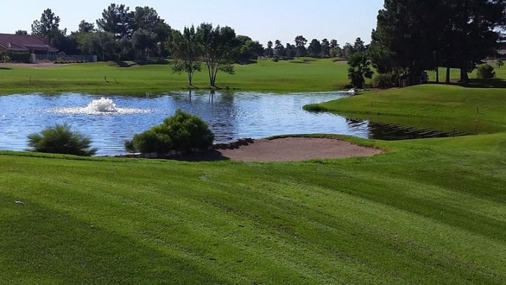 Palm Valley Golf Course 12