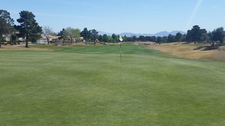 Palm Valley Golf Course 4
