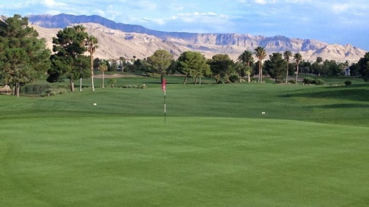 Palm Valley Golf Course 8