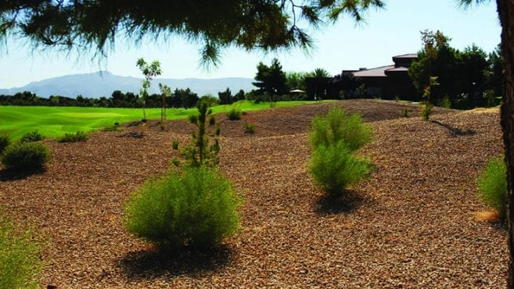 The Legacy Golf Course 7